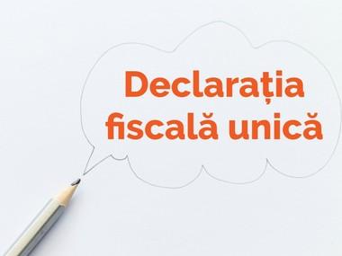 Declaratia 200 Pdf